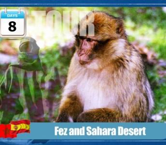 Tour de Fez y Desierto de Sahara